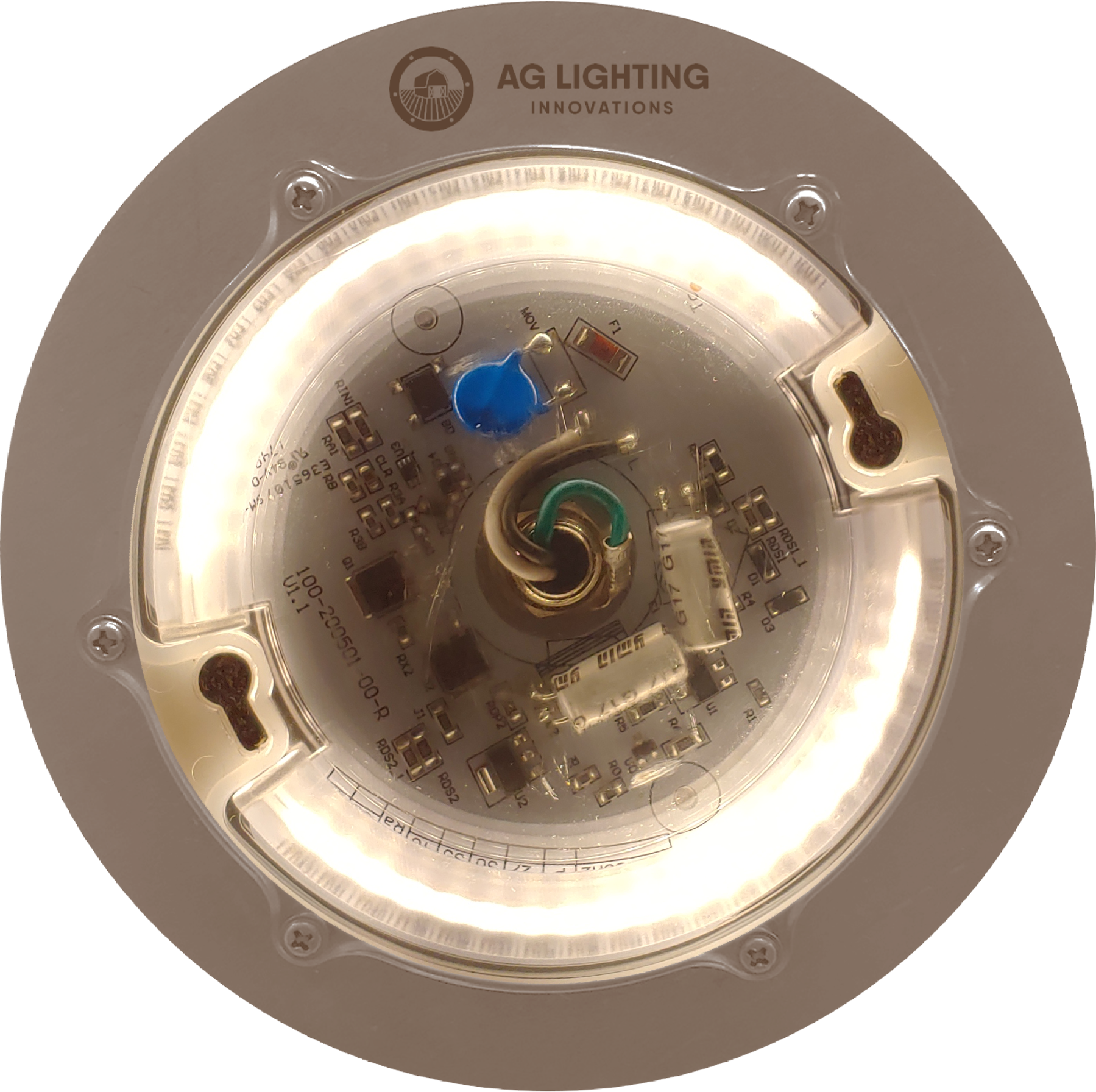 AG25 LED Light Fixture
